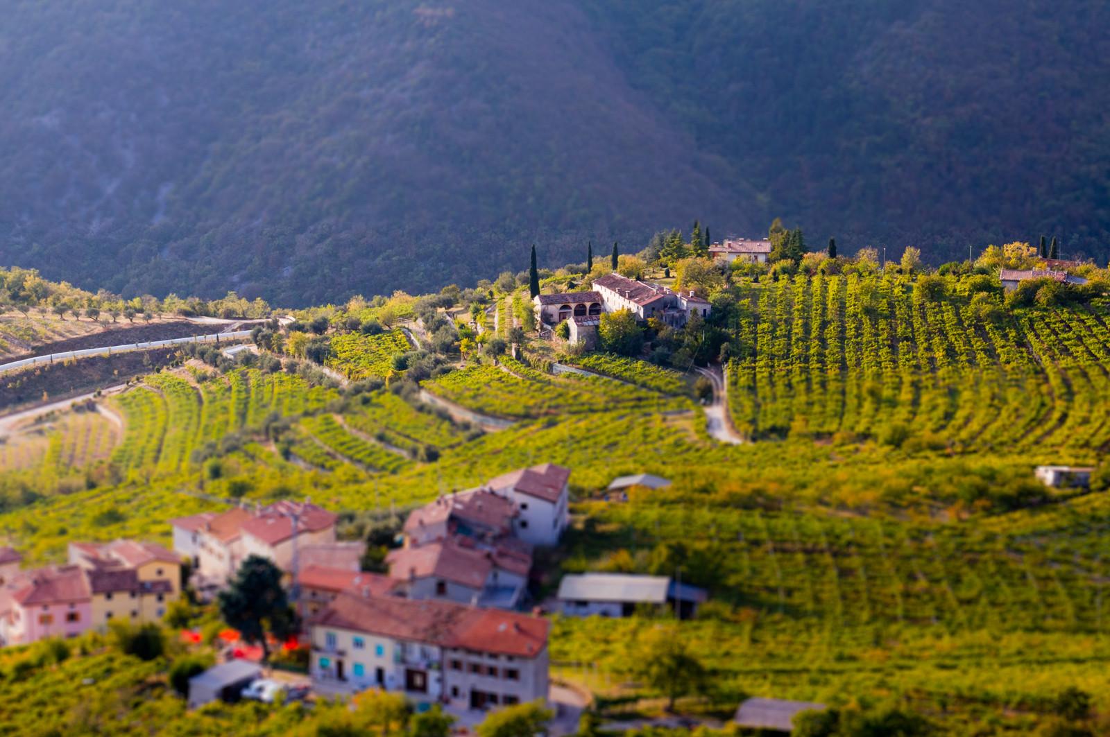 Tại sao rượu vang Amarone lại đắt đỏ?