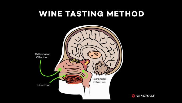 Phương pháp thử rượu