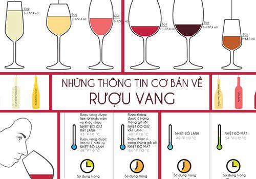 Những thông tin cơ bản về rượu vang
