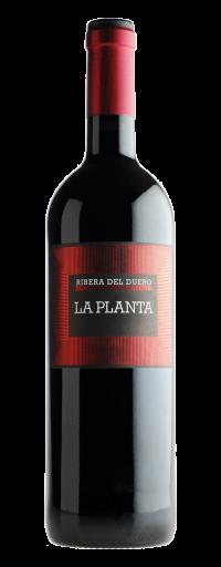 Arzuaga La Planta  - 750ml